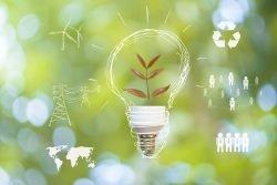 Symbolbild Nachhaltigkeit: Um eine Glühbirne, in der sich statt eines Leuchtfadens ein Zweig befindet, sind Symbole angeordnet, die Nachhaltigkeit betreffen.