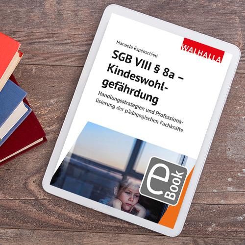 Coverabbildung SGB VIII § 8a - Kindeswohlgefährdung
